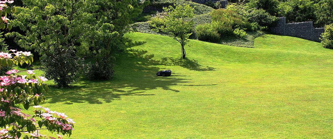 Automatischer Garten