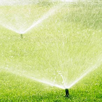Versenkregner einer automatischen Bewässerungsanlage